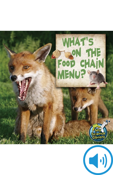 What's on the Food Chain Menu?